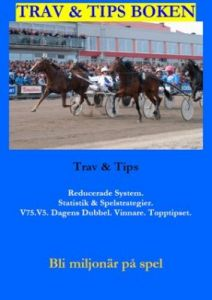 Trav & Tips Boken