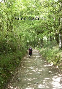 Buen Camino av Kjell Strömner