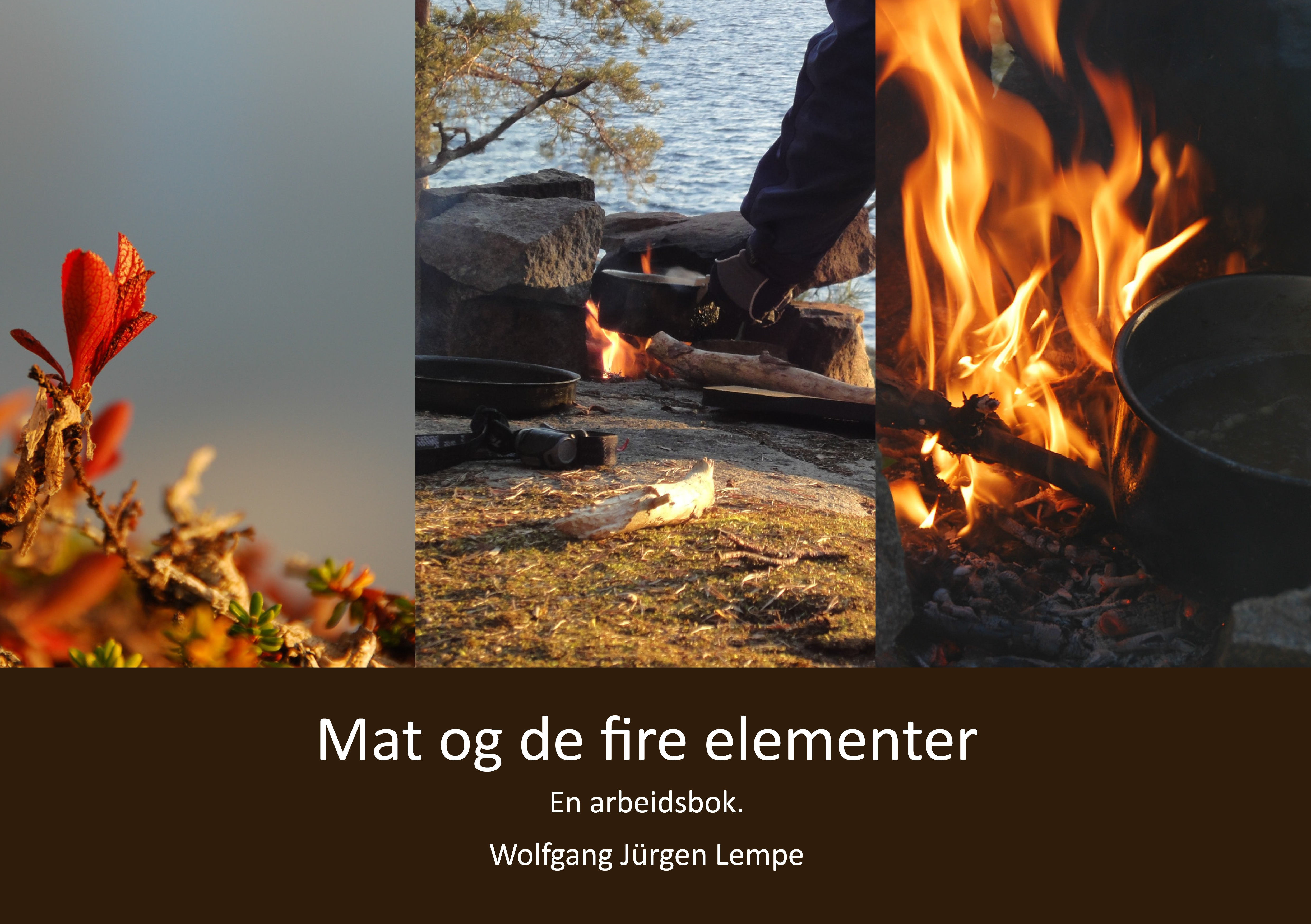 Mat og de fire elementer av Wolfgang Jürgen Lempe