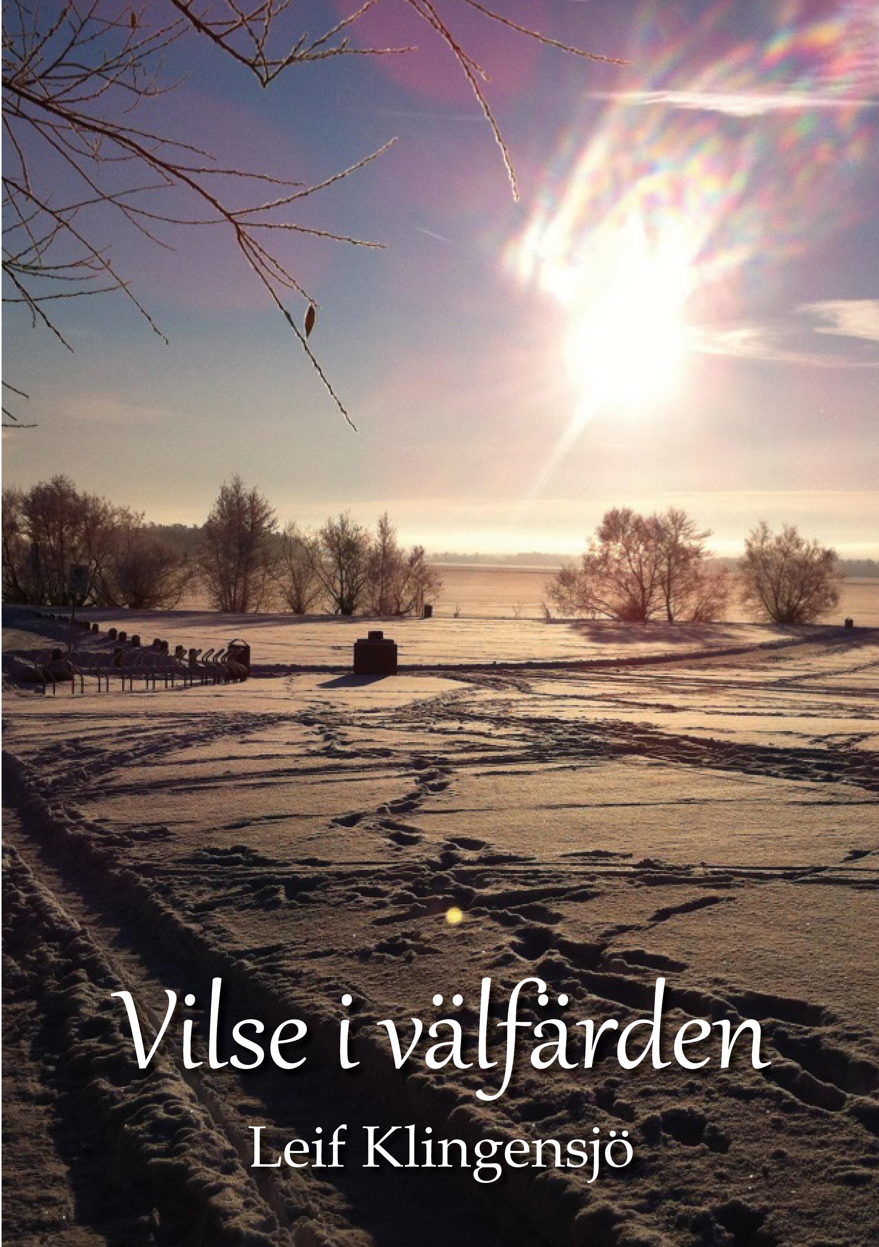 Vilse i välfärden av Leif Klingensjö